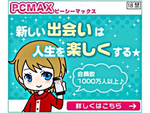 pcmax具体的な利用方法